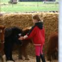 detzkyhoeve-pony-knuffel-kerstival-37.jpg