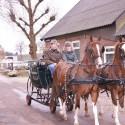 detzkyhoeve-pony-knuffel-kerstival-4.jpg