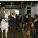 detzkyhoeve-pony-knuffel-kerstival-64.jpg