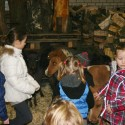 detzkyhoeve-pony-knuffel-kerstival-70.jpg