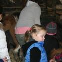 detzkyhoeve-pony-knuffel-kerstival-71.jpg