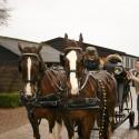 detzkyhoeve-pony-knuffel-kerstival-75.jpg