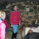 detzkyhoeve-pony-knuffel-kerstival-84.jpg