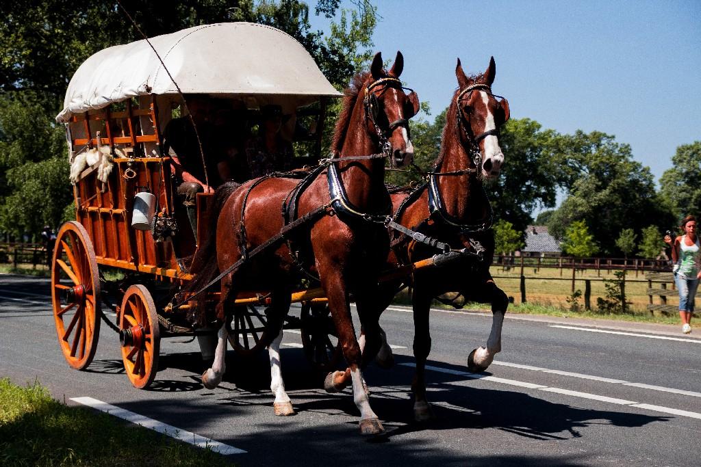 Cowboywagen huren Soest Hilversum Studio Detzkyhoeve rekwisiet