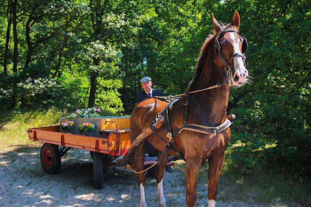 Rouwkoets boeren bandenwagen huren soest baarn amersfoort