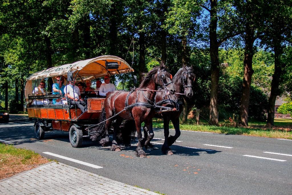Huifkar Fries Paard huren Detzkyhoeve Soest