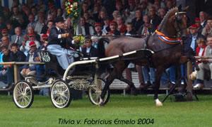 Show foto's Detzkyhoeve Soest